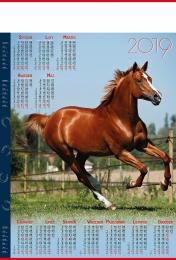 kalendarz plakatowy b-1 2019, p20 - koń 2019